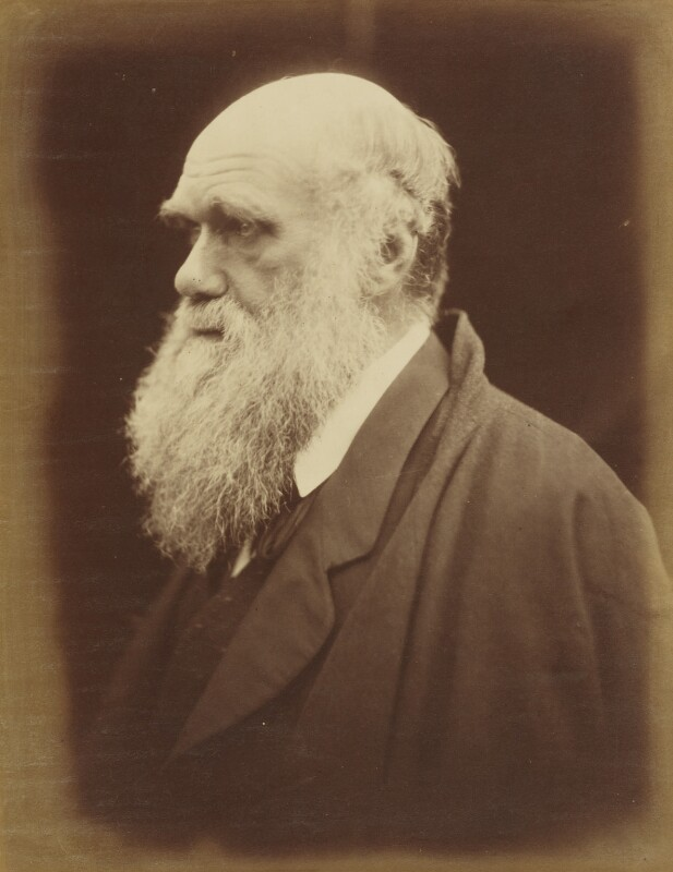 Charles Darwin, by Julia Margaret Cameron, 1868-1869 - NPG P8 - © National Portrait Gallery, London