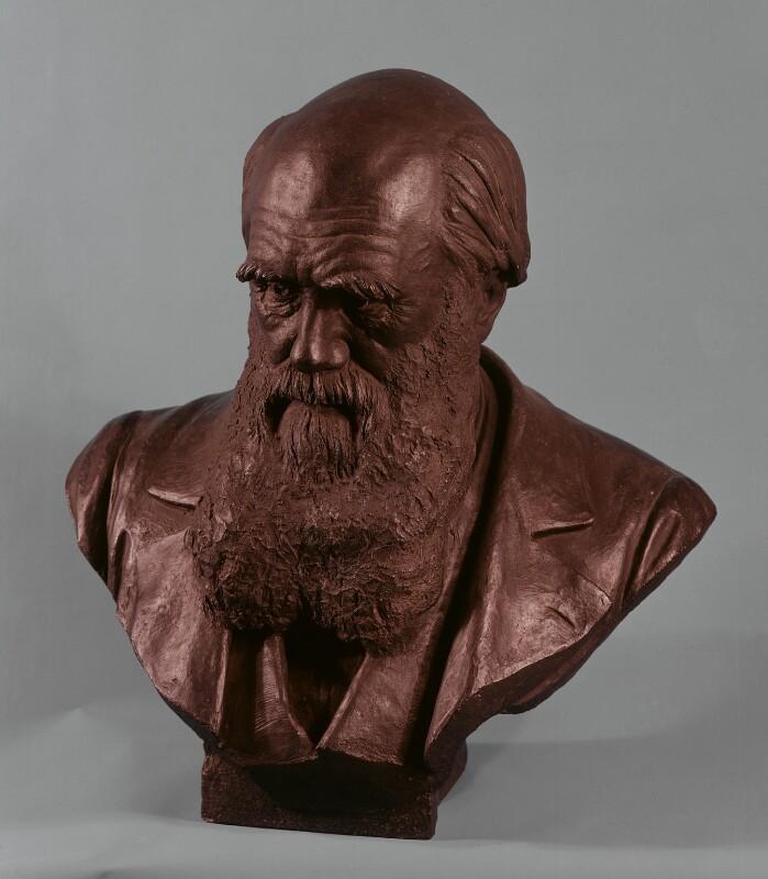 Charles Darwin, by Sir Joseph Edgar Boehm, 1st Bt, 1883 - NPG 761 - © National Portrait Gallery, London