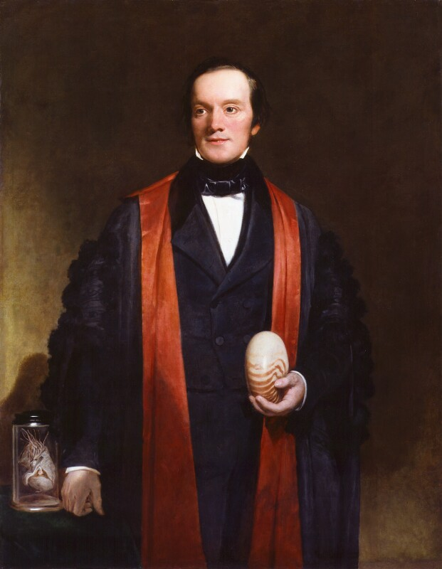 Sir Richard Owen, by Henry William Pickersgill, circa 1845 - NPG 938 - © National Portrait Gallery, London