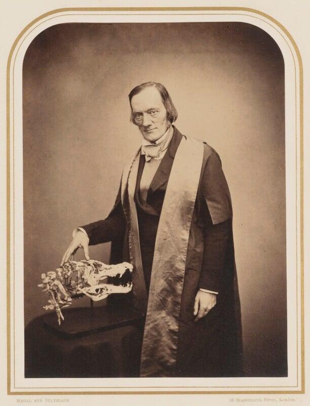 Sir Richard Owen, by Maull & Polyblank, circa 1855 - NPG P106(15) - © National Portrait Gallery, London