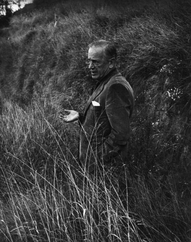 Graham Sutherland, by John Hedgecoe, 1968 - NPG P162 - © John Hedgecoe / Topfoto