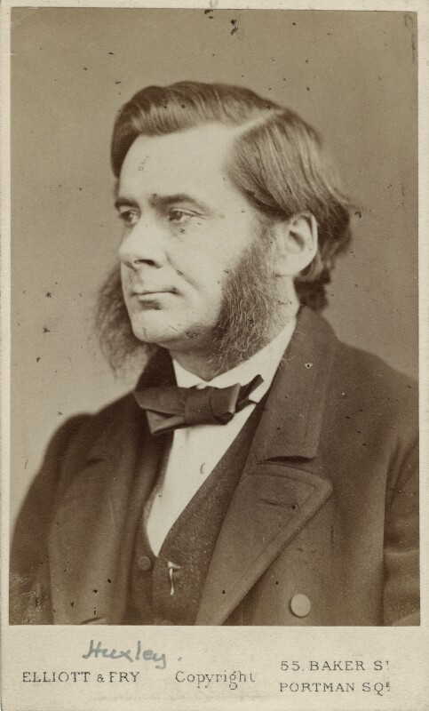 Thomas Henry Huxley, by Elliott & Fry, circa 1874 - NPG Ax38172 - © National Portrait Gallery, London