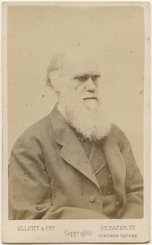 Charles Darwin, by Elliott & Fry, late 1870s - NPG Ax46279 - © National Portrait Gallery, London