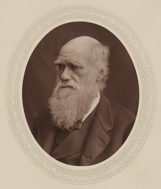 Charles Darwin, by Lock & Whitfield, published by  Sampson Low, Marston, Searle and Rivington, published 1878 - NPG Ax17583 - © National Portrait Gallery, London