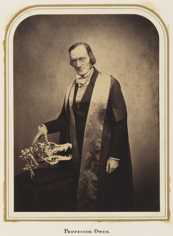 Sir Richard Owen, by Maull & Polyblank, published May 1856 - NPG Ax7272 - © National Portrait Gallery, London