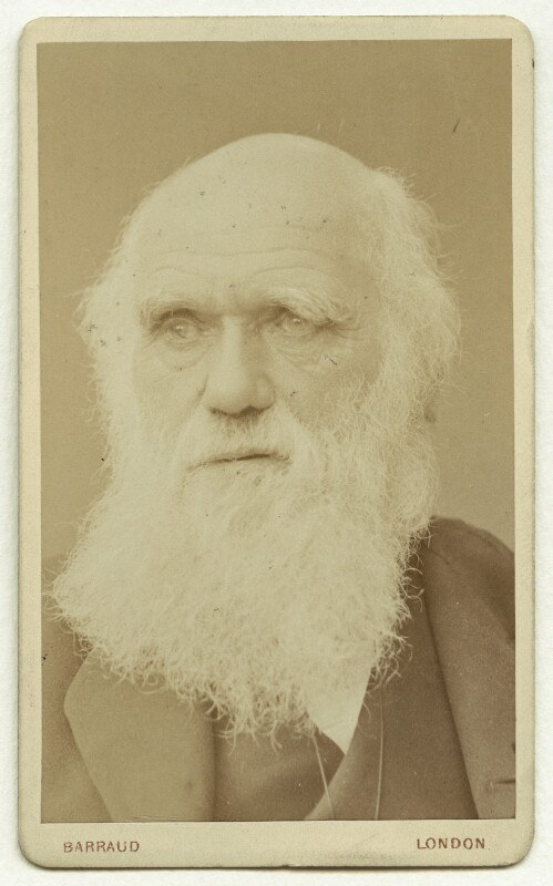 Charles Darwin, by Herbert Rose Barraud, circa 1881 - NPG x5936 - © National Portrait Gallery, London