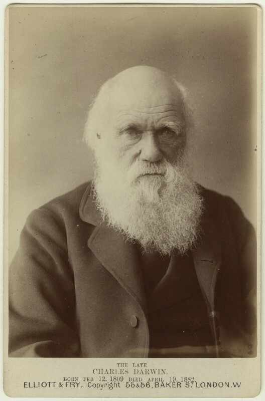 Charles Darwin, by Elliott & Fry, 29 November 1881 - NPG x5937 - © National Portrait Gallery, London