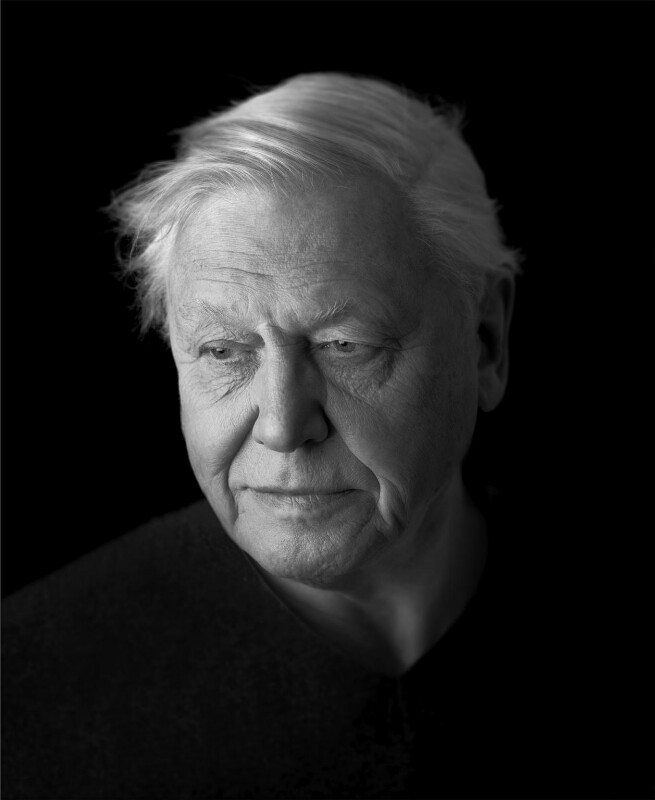 Sir David Attenborough, by Richard Boll, 7 February 2007 - NPG P1296 - © Richard Boll / National Portrait Gallery, London