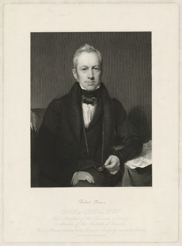 Robert Brown, by Charles Fox, after  Henry William Pickersgill, published 1837 - NPG D32220 - © National Portrait Gallery, London