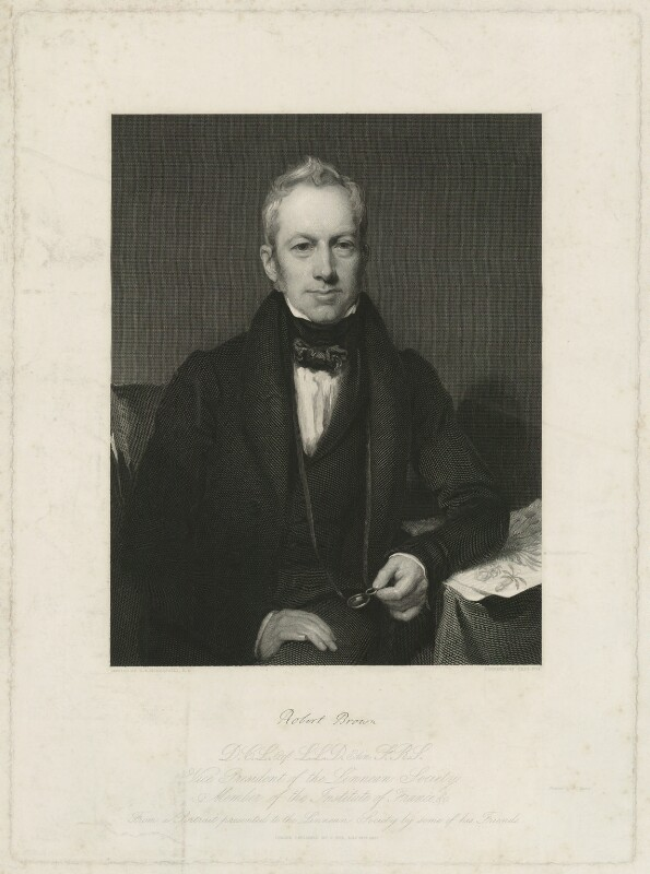 Robert Brown, by Charles Fox, after  Henry William Pickersgill, published 1837 - NPG D32221 - © National Portrait Gallery, London