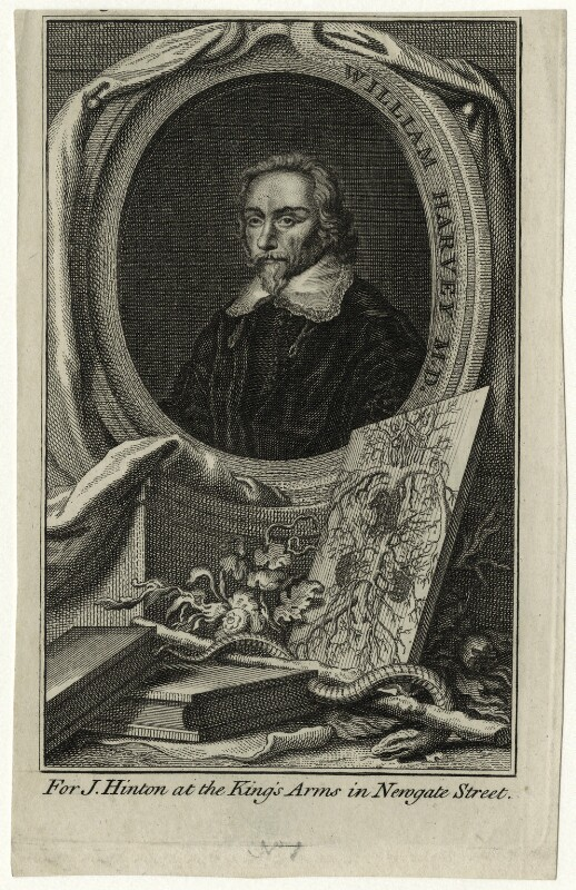 William Harvey, after Wilhelm von Bemmel, published by  John Hinton, mid 18th century - NPG D27266 - © National Portrait Gallery, London