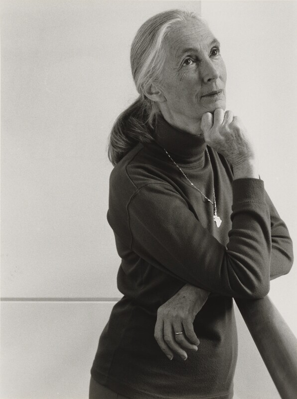 Dame (Valerie) Jane Goodall (née Morris-Goodall), by Julia Hedgecoe, 9 June 1998 - NPG P751(9) - © Julia Hedgecoe / National Portrait Gallery, London