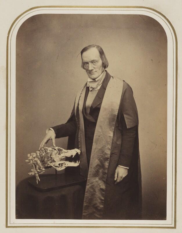 Sir Richard Owen, by Maull & Polyblank, circa 1855 - NPG Ax87531 - © National Portrait Gallery, London