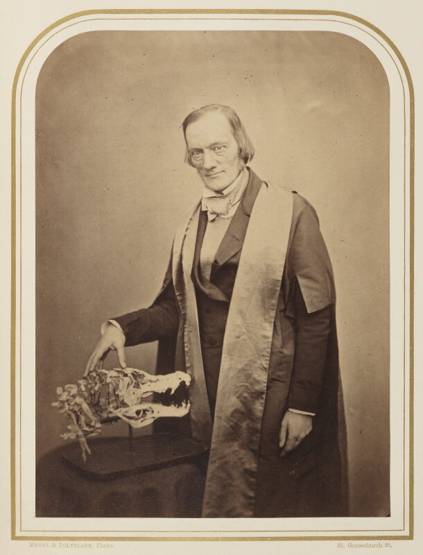 Sir Richard Owen, by Maull & Polyblank, published May 1856 - NPG Ax7925 - © National Portrait Gallery, London