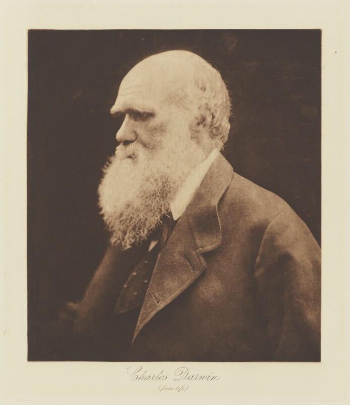 Charles Darwin, by Julia Margaret Cameron, published by  T. Fisher Unwin, published 1893 (1868) - NPG Ax29139 - © National Portrait Gallery, London