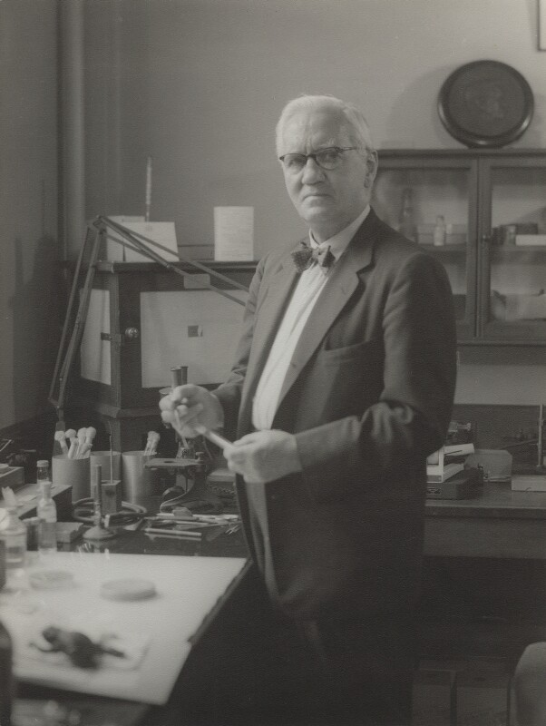 Alexander Fleming, by Howard Coster, 1954 - NPG x1836 - © National Portrait Gallery, London