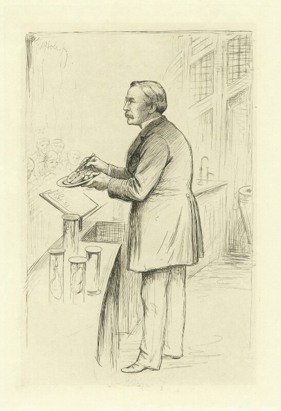 William Smith Greenfield, by William Brassey Hole, published 1884 - NPG D34908 - © National Portrait Gallery, London