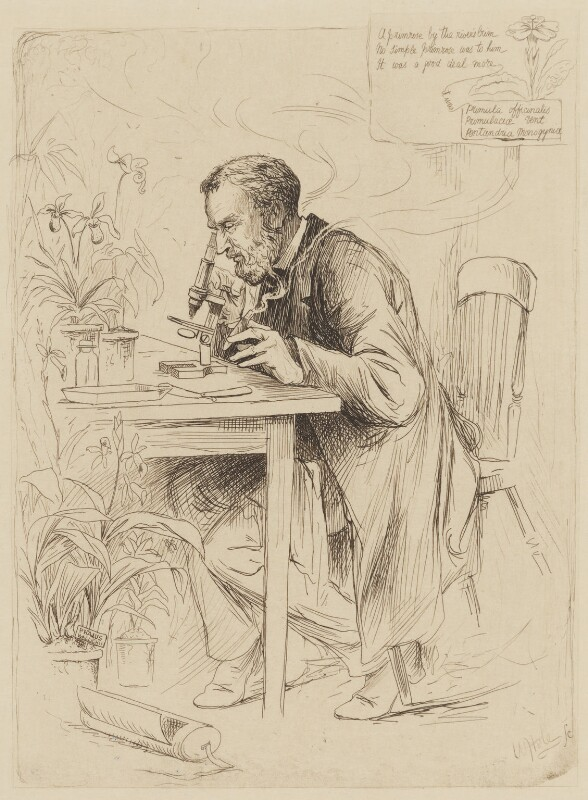 Alexander Dickson, by William Brassey Hole, published 1884 - NPG D35178 - © National Portrait Gallery, London