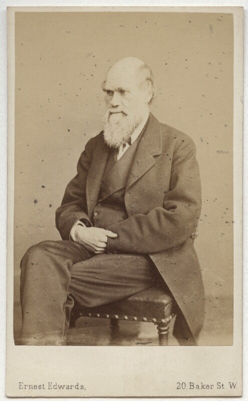 Charles Darwin, by Ernest Edwards, 1865-1866 - NPG x134603 - © National Portrait Gallery, London