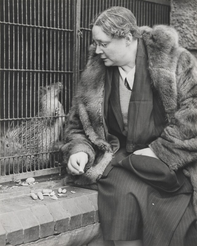 Dorothy Sayers and adopted porcupines, by Wolfgang Suschitzky, circa 1944 - NPG x200761 - © the estate of W.Suschitzky