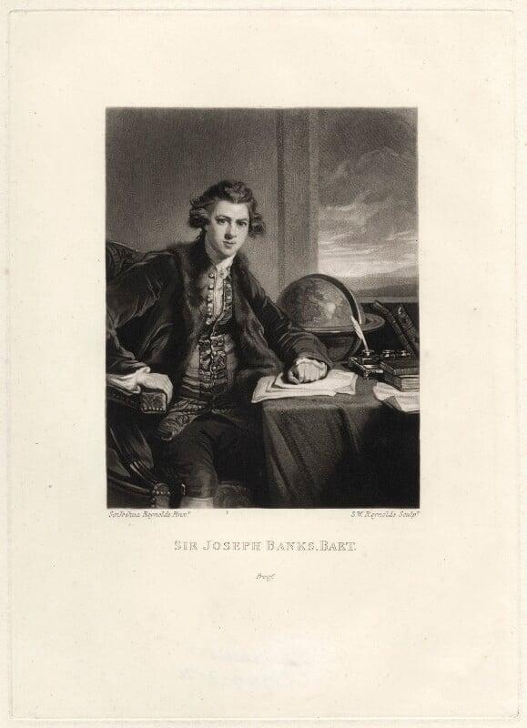 Sir Joseph Banks, Bt, by Samuel William Reynolds, after  Sir Joshua Reynolds, published 1834 (1771-1773) - NPG D621 - © National Portrait Gallery, London