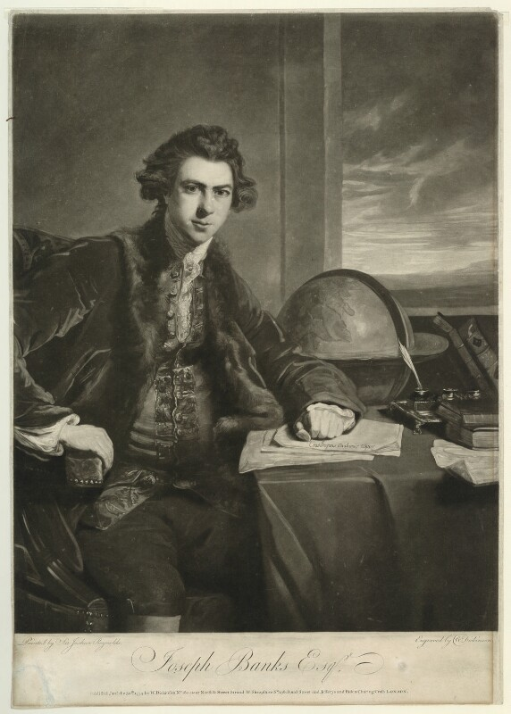 Sir Joseph Banks, Bt, by William Dickinson, after  Sir Joshua Reynolds, published 1774 - NPG D7504 - © National Portrait Gallery, London