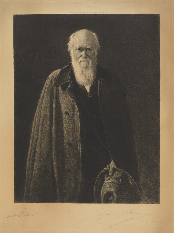 Charles Darwin, by Léopold Flameng, after  John Collier, published 1883 - NPG D9709 - © National Portrait Gallery, London