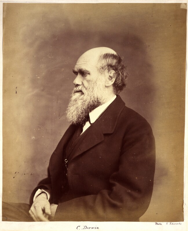 Charles Darwin, by Ernest Edwards, 1865-1866 - NPG x1500 - © National Portrait Gallery, London