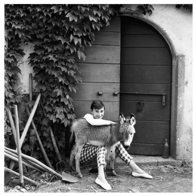 Audrey Hepburn, by Norman Parkinson, 23 June 1955 - NPG x30114 - © Norman Parkinson Archive