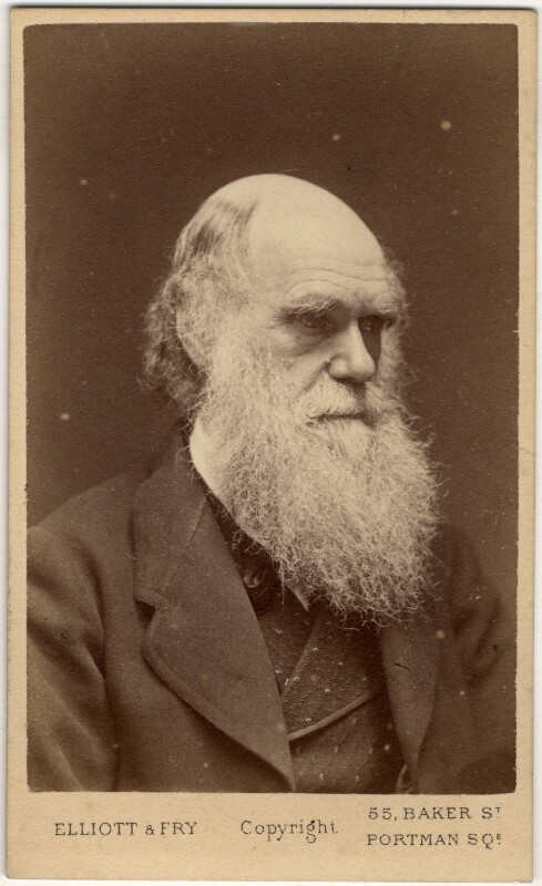 Charles Darwin, by Elliott & Fry, 1874 - NPG x5933 - © National Portrait Gallery, London