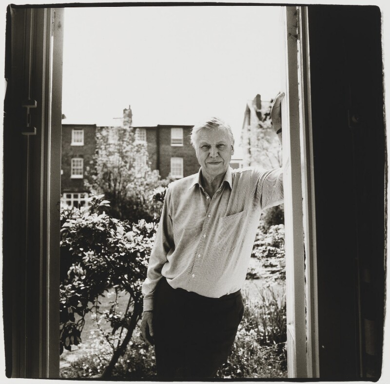 Sir David Attenborough, by Julian Anderson, 1995 - NPG x87804 - © Julian Anderson