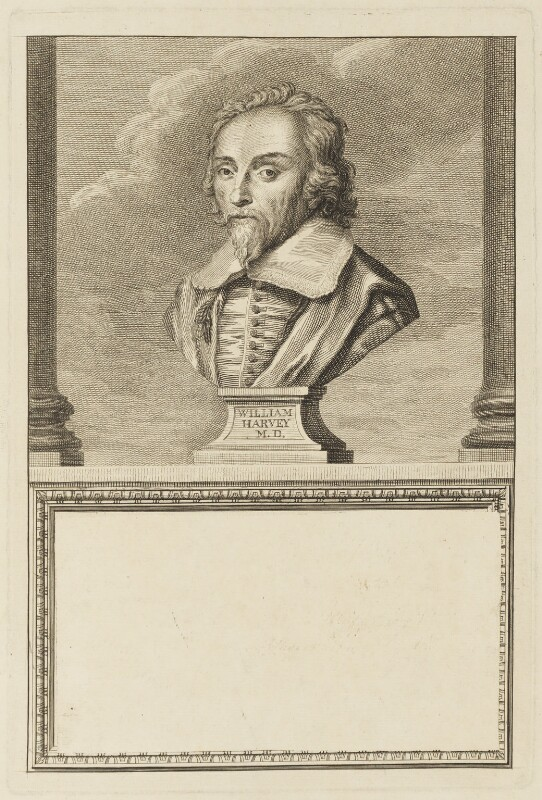 William Harvey, probably after Peter Scheemakers, (circa 1750-1775) - NPG D18820 - © National Portrait Gallery, London