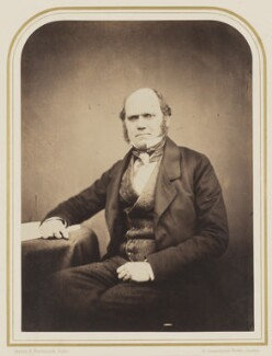 Charles Darwin, by Maull & Polyblank, circa 1855 - NPG P106(7) - © National Portrait Gallery, London
