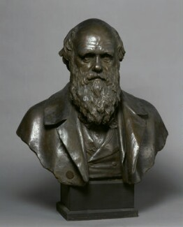 Charles Darwin, by Horace Montford, after 1882 - NPG 1395 - © National Portrait Gallery, London