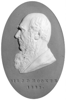 Sir Joseph Dalton Hooker, by Frank Bowcher - NPG 2033