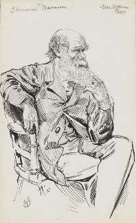 Charles Darwin, by Harry Furniss,  - NPG  - © National Portrait Gallery, London