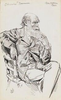 Charles Darwin, by Harry Furniss,  - NPG 6251(16) - © National Portrait Gallery, London