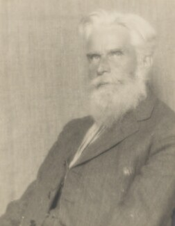 Henry Havelock Ellis, by Man Ray - NPG P606
