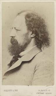 Alfred, Lord Tennyson, by Elliott & Fry - NPG Ax30390