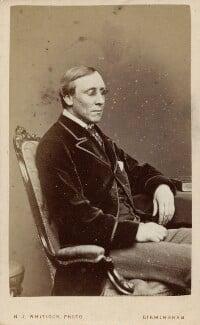 Henry Fawcett, by Henry Joseph Whitlock - NPG Ax18294