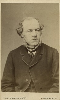 Henry Austin Bruce, 1st Baron Aberdare, by John Watkins - NPG Ax8529