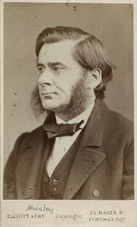 Thomas Henry Huxley, by Elliott & Fry - NPG Ax38172
