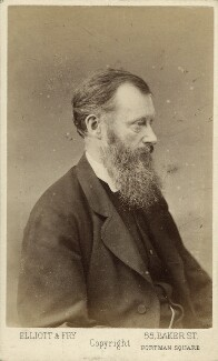 William Edward Forster, by Elliott & Fry - NPG Ax38634
