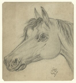 Head of a horse, by George Estall, late 19th century - NPG  - © National Portrait Gallery, London