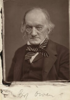 Sir Richard Owen, by Lock & Whitfield - NPG x12633