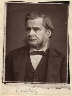 Thomas Henry Huxley, by Lock & Whitfield, 1880 or before - NPG x11997 - © National Portrait Gallery, London
