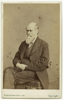 Charles Darwin, by London Stereoscopic & Photographic Company, after  Ernest Edwards, 1865-1866 - NPG x5935 - © National Portrait Gallery, London