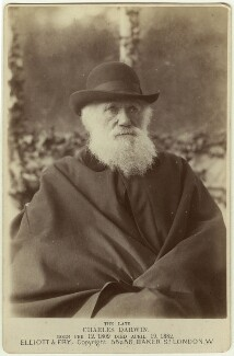 Charles Darwin, by Elliott & Fry, 29 November 1881 - NPG x5938 - © National Portrait Gallery, London