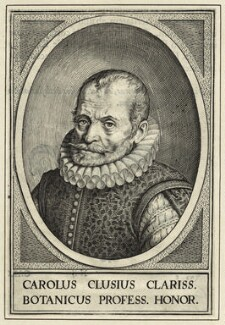 Charles de l'Écluse (Carolus Clusius), after Unknown artist - NPG D25674