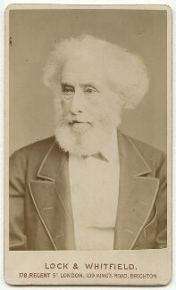 William Rathbone Greg, by Lock & Whitfield - NPG x87010
